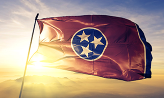 Honest Elections Project filed a brief in the Tennessee Supreme Court in support of the state of Tennessee